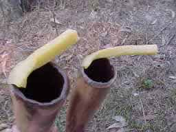 stages in repairing a didgeridoo mouthpiece